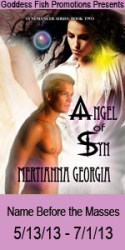 Angel_of_Syn_Book_Cover_Banner_copy