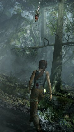 tombraider (15)