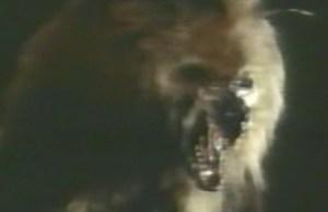 Werewolf_TV_Show_Banner_12_9_12