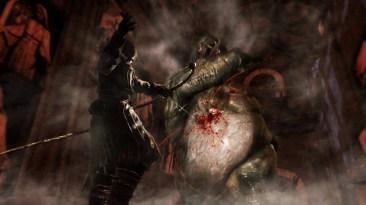 Dark Souls II (10)