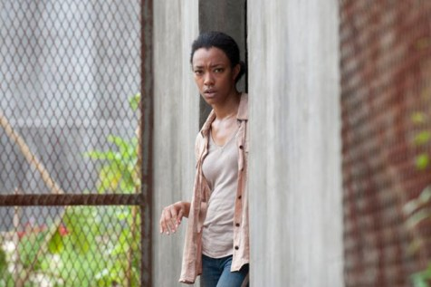THE-WALKING-DEAD-Season-4-Episode-3-Isolation-2