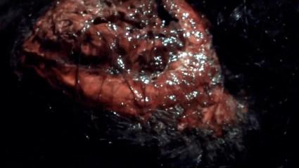 Open zombie brains