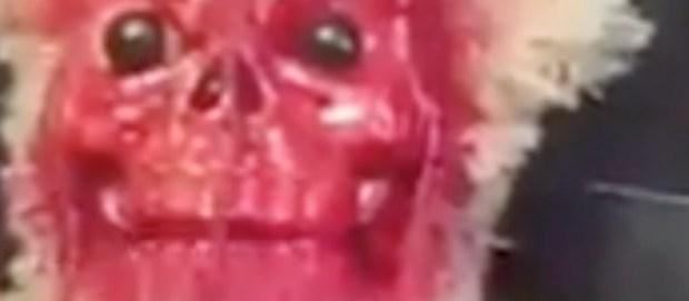 Horrifying_Monkey_Toy
