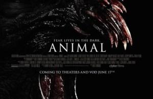 Animal_Poster