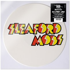 Sleaford Mods_Picture Disc