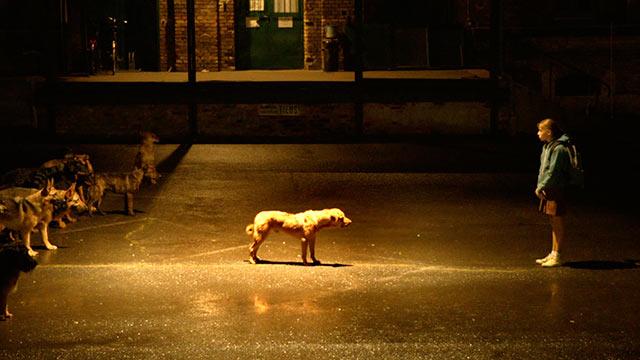 Dog Watches Deathgasm At Film4 Frightfest Bloody