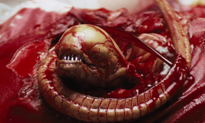 ALIEN (1979) Chestburster | via FOX
