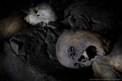 Capuchin Corpses, Screaming
