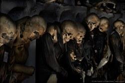 Capuchin Corpses, Standing