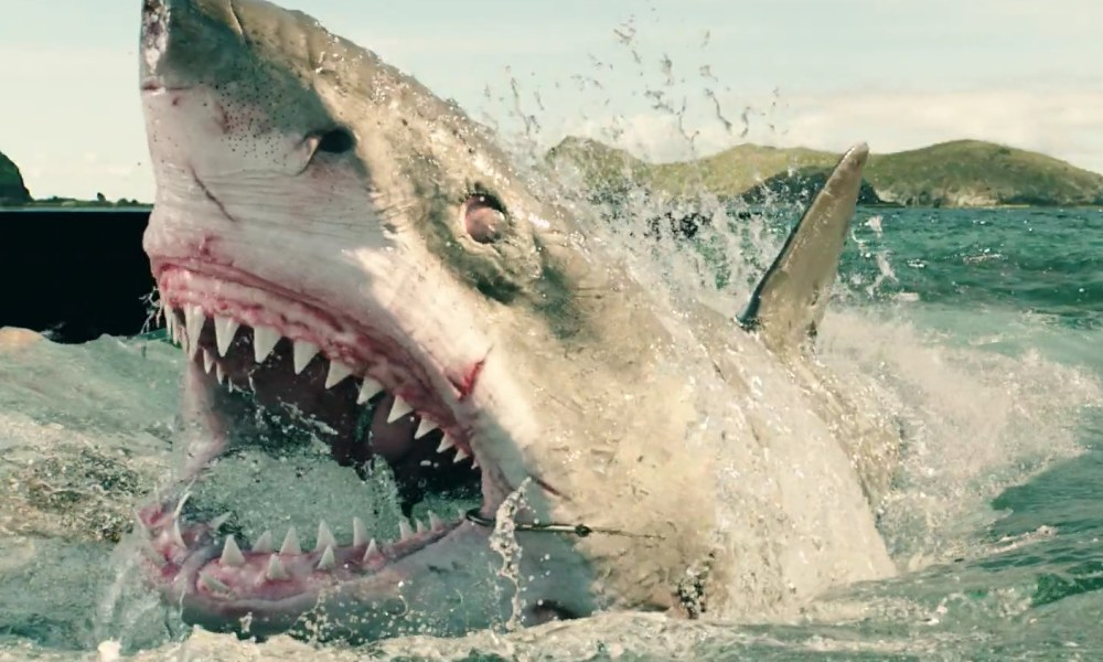 """Shark Week"" Kicks Off August 9th; Will Explore How the Pandemic Has Allowed Sharks to Reclaim the Ocean"