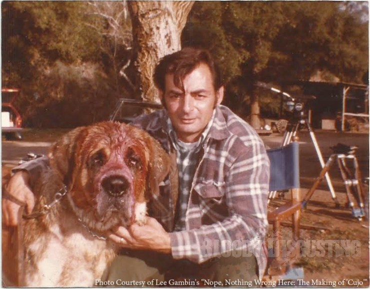 """CUJO: Animal trainer Karl Lewis Miller with """"Daddy"""", one of the St. Bernards who played the titular role. NOPE, NOTHING WRONG HERE: THE MAKING OF """"CUJO"""" by Lee Gambin"""
