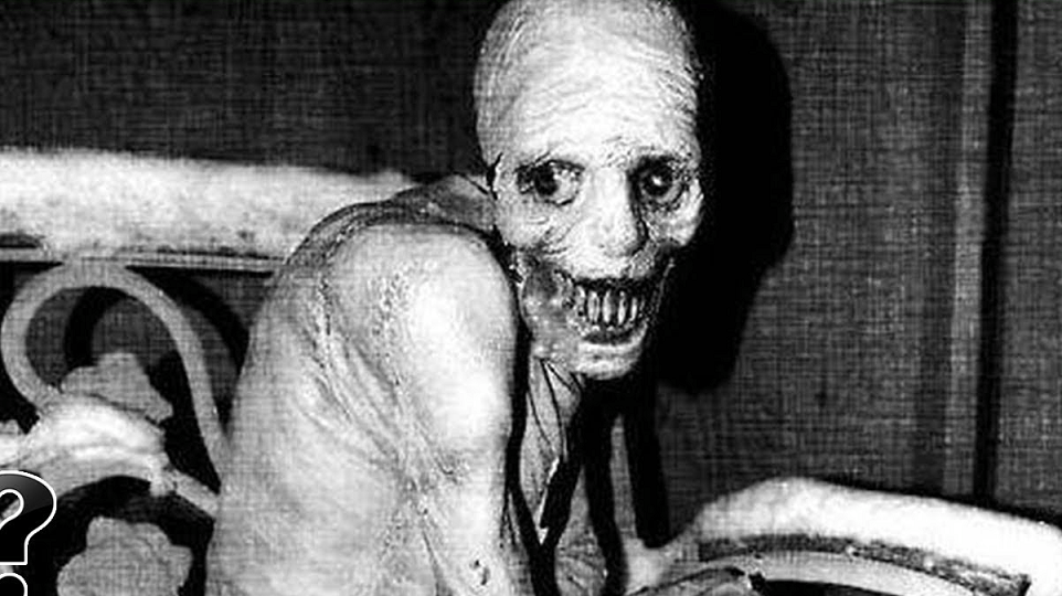 The Russian sleep experiment picture