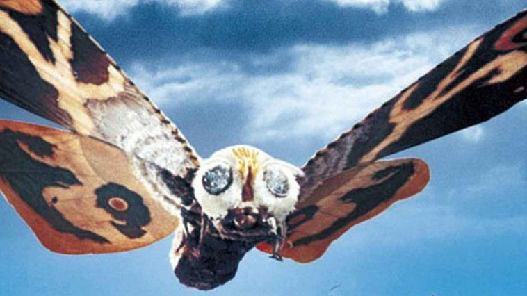 32e543d34f1 Additionally, Mothra is typically accompanied by the appearance of  minuscule twin pixies who can summon her with their alluring siren song.