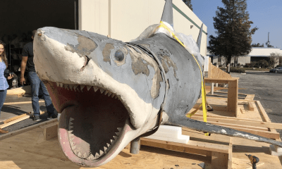 It's Been 5 Years Since the 'Jaws' Ride Shut Down