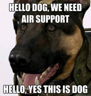 Dog in Call of Duty