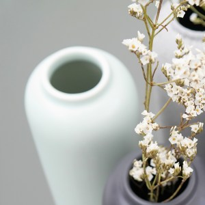 Menthe givrée de vases Bloom