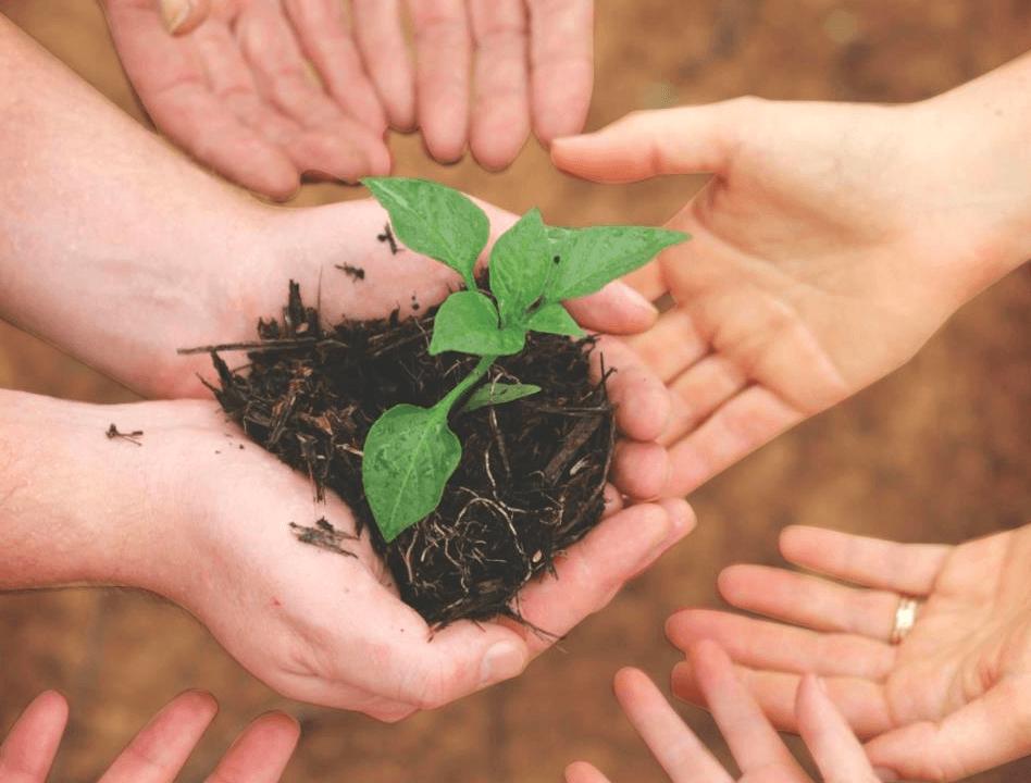 giving-tree-assoc-tree
