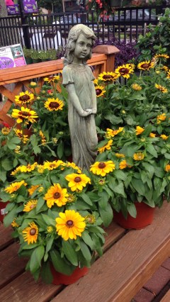 Bloomers Home and Garden Center