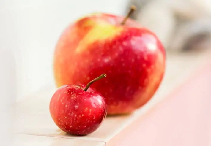 small and large apples represent knowledge sharing challenges for companies of all sizes