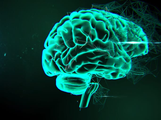 brain representing AI and machine learning