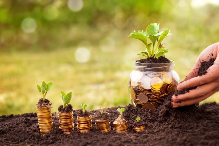 jar of money with plant represents lead nurturing content