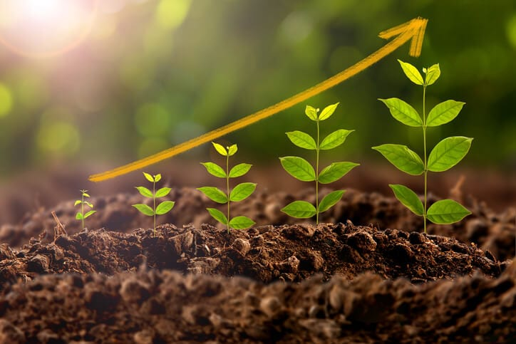 plant growth shows what can happen when you break down silo culture