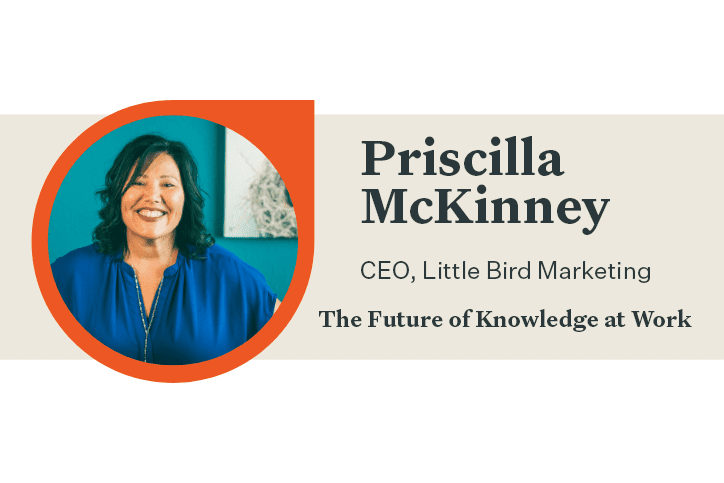 Priscilla McKinney CEO of LIttle Bird Marketing Q&A baner