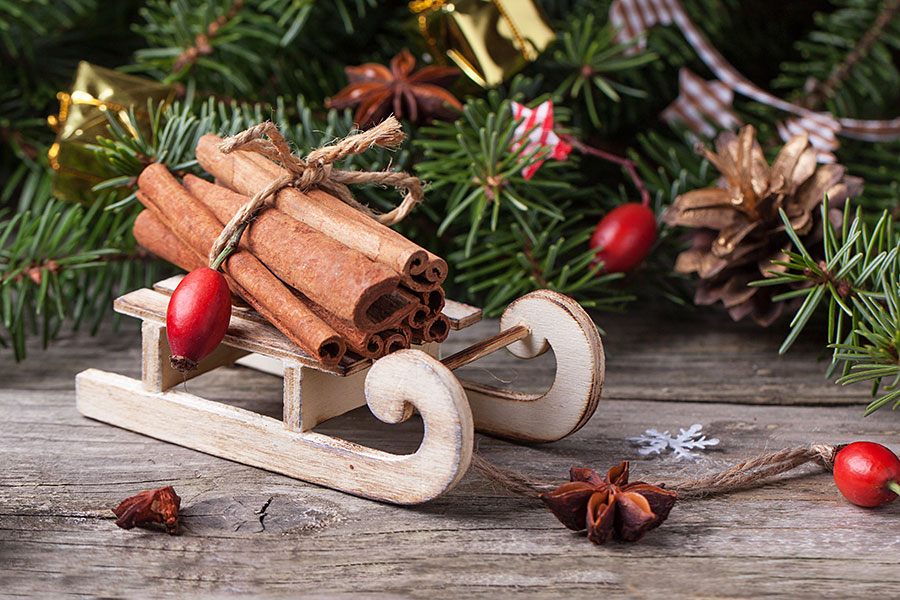 rustic christmas decoration with sled and cinnamon