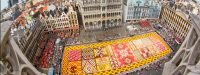 Flower carpet covers The Grand Place in Brussels - Bloomifique