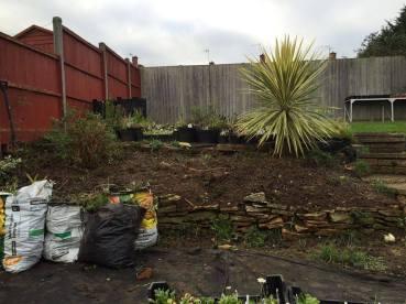 garden 151115 1
