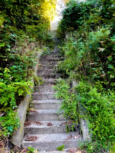 Hidden Staircase Adventure