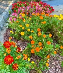 Walkway gardens