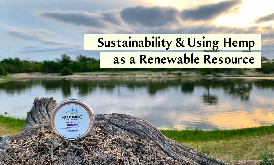 Celebrating Earth Day: Prioritizing Sustainability and Hemp as a Renewable Resource