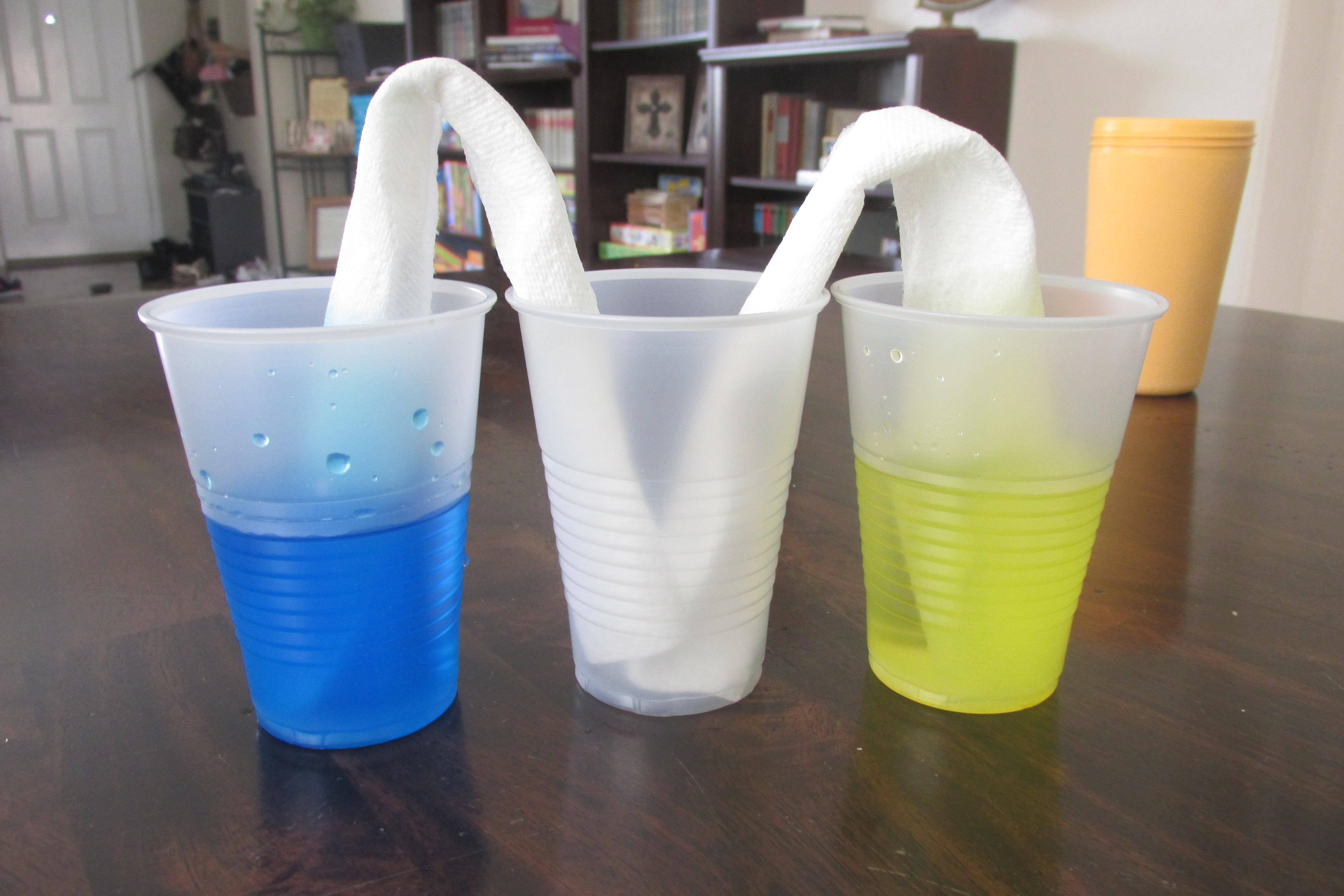 Preschool Science Water Absorption Experiment