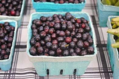 blueberries_fotor