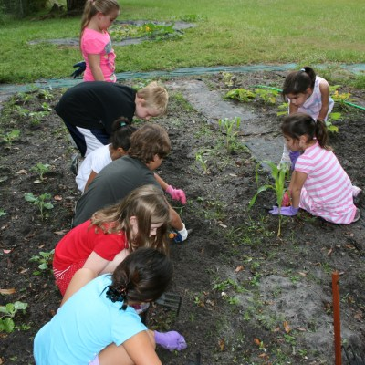 Lessons in Bugs and Frogs, Gourds and FUN!