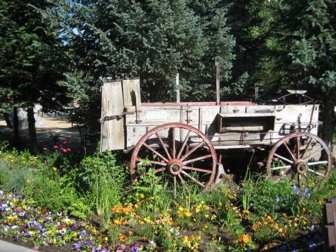 Western wagon garden