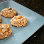 Oatmeal carrot cookies for dessert