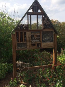 ifas insect house exploration gardens