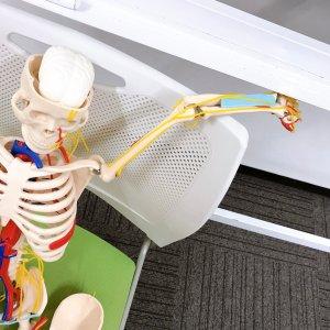 解剖生理学講座で学びの一日