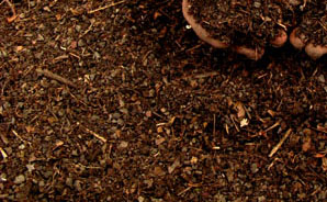 Compost/Organic Material