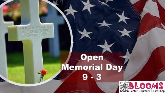 Memorial Day Hours 9-3