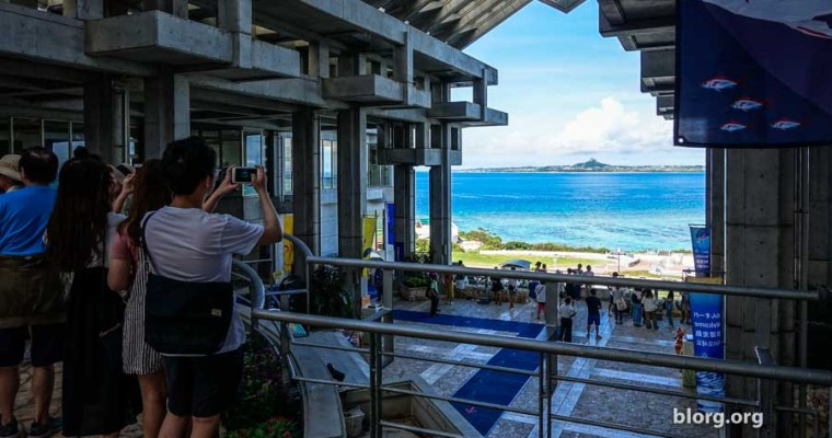 Okinawa Tourist Guide: Okinawa Churaumi Aquarium