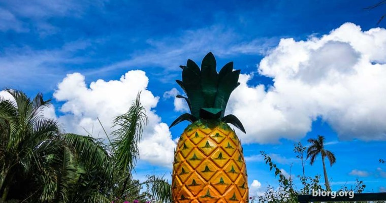 Okinawa Tourist Guide: Nago Pineapple Park