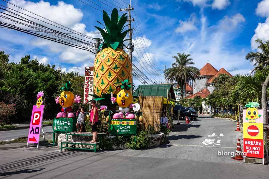 nago pineapple park