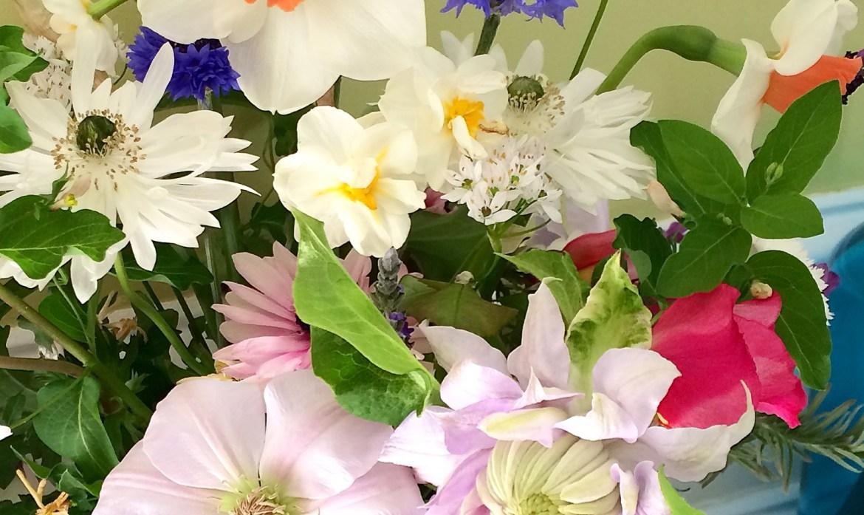 Florist's Garden Series:  April Fillers and Spillers