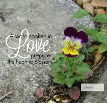 A word spoken in love IMG_0236