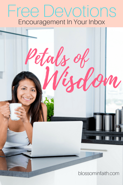 Petals of Wisdom is a devotional series that speaks wisdom into the lives of busy women seeking Godly answers. These short devotions encouraging, uplifting, and truth filled.