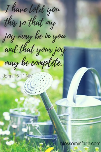 The Fruit of Joy _I have told you this so that my joy may be in you and that your joy may be complete._ John 15_11(2)