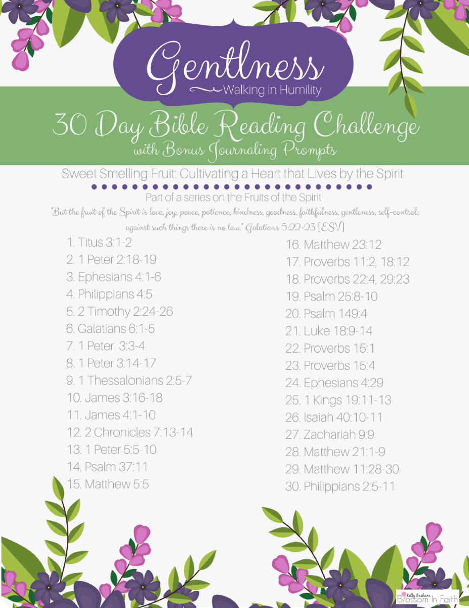 Take A closer look at the Fruits of the Spirit. Printable 30 day topical bible study reading challenge on Gentleness. Also Includes bonus journaling paper with prompts.